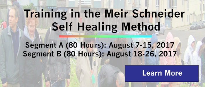 Training in the Meir Schneider Self Healing Method August 2017